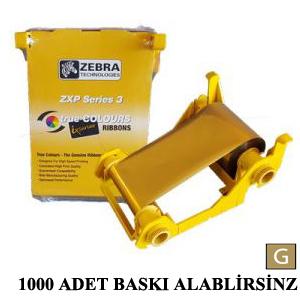 800033-806 – GOLD (1000 BASKI )